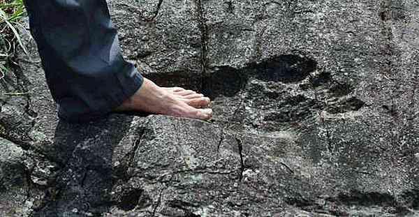 O estranho mistério das pegadas de Niterói