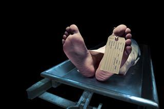 """Morreu na hora de """"molhar o biscoito"""": Estranhos casos de mortes relacionadas ao S-E-X-)0"""