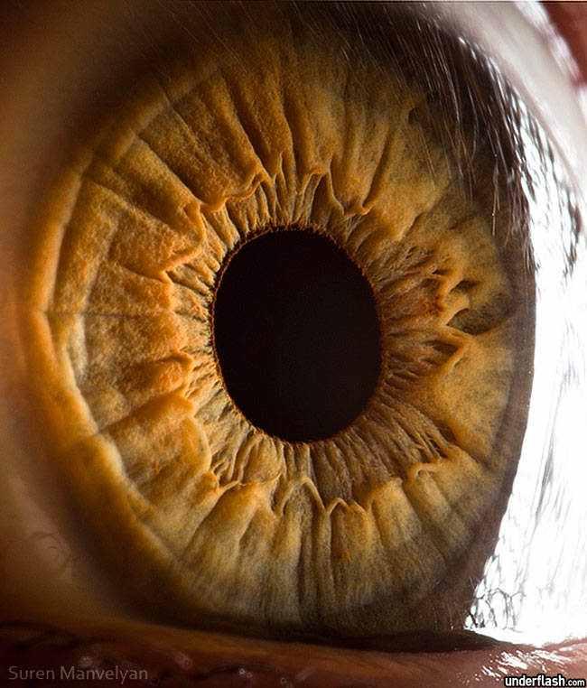 Olhos incríveis