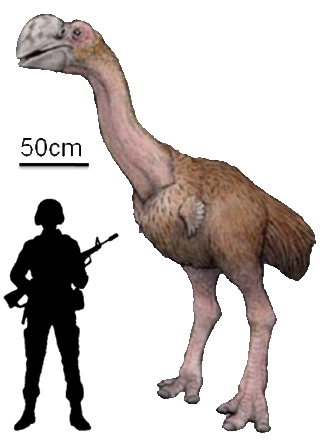 Indio Gigante, o frango gigantesco