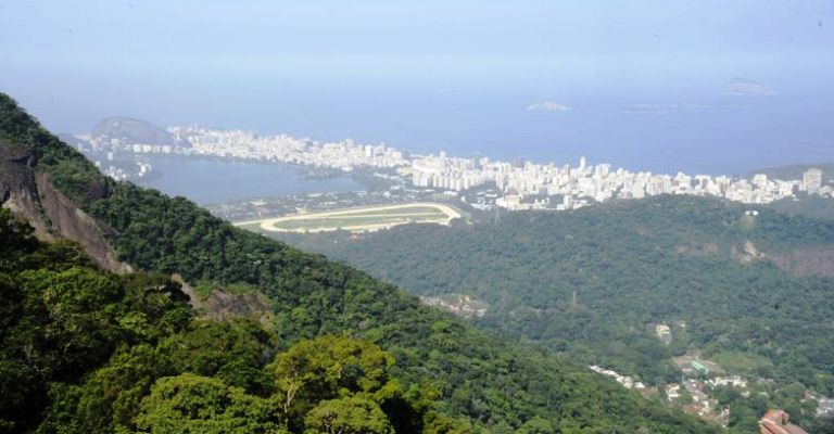 Brasil pode ser líder em desenvolvimento sustentável