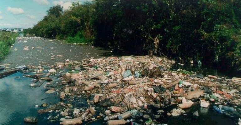 16 de setembro: Dia Mundial de Limpeza de Praias e Rios