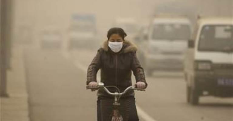 Poluição e resíduos tóxicos causam maioria das mortes