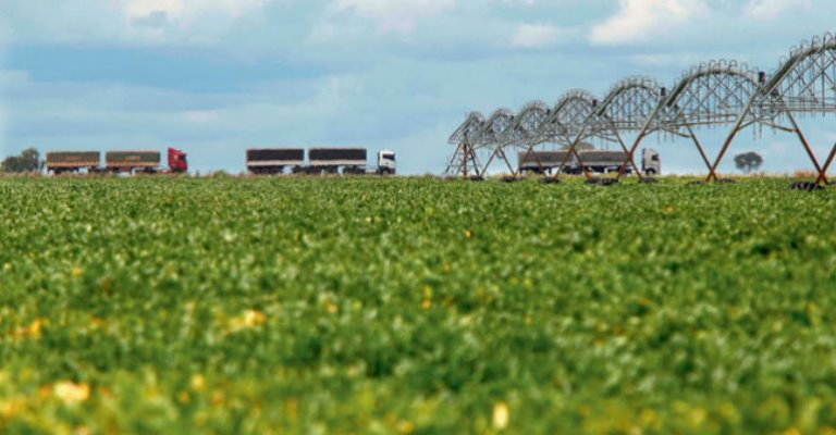 IBGE contratará 26,4 mil pessoas para o Censo Agropecuário