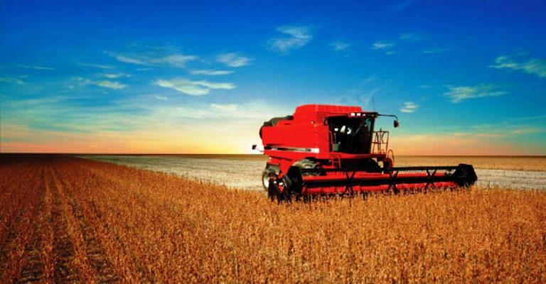 Agropecuária gera mais de 36 mil novos postos de trabalho