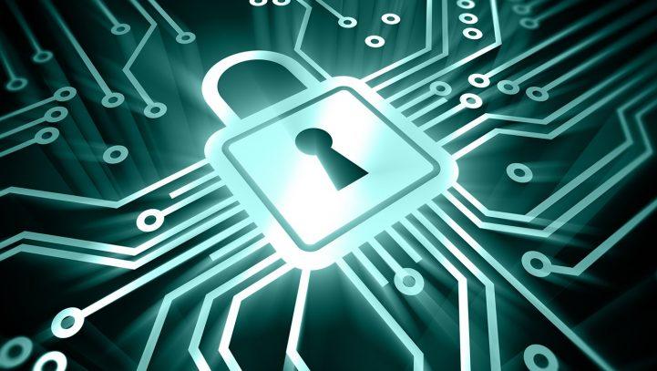 A proteção de dados pessoais no STF e o papel do IBGE