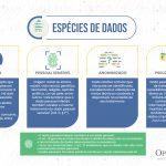 """Infográfico """"Espécies de Dados"""""""