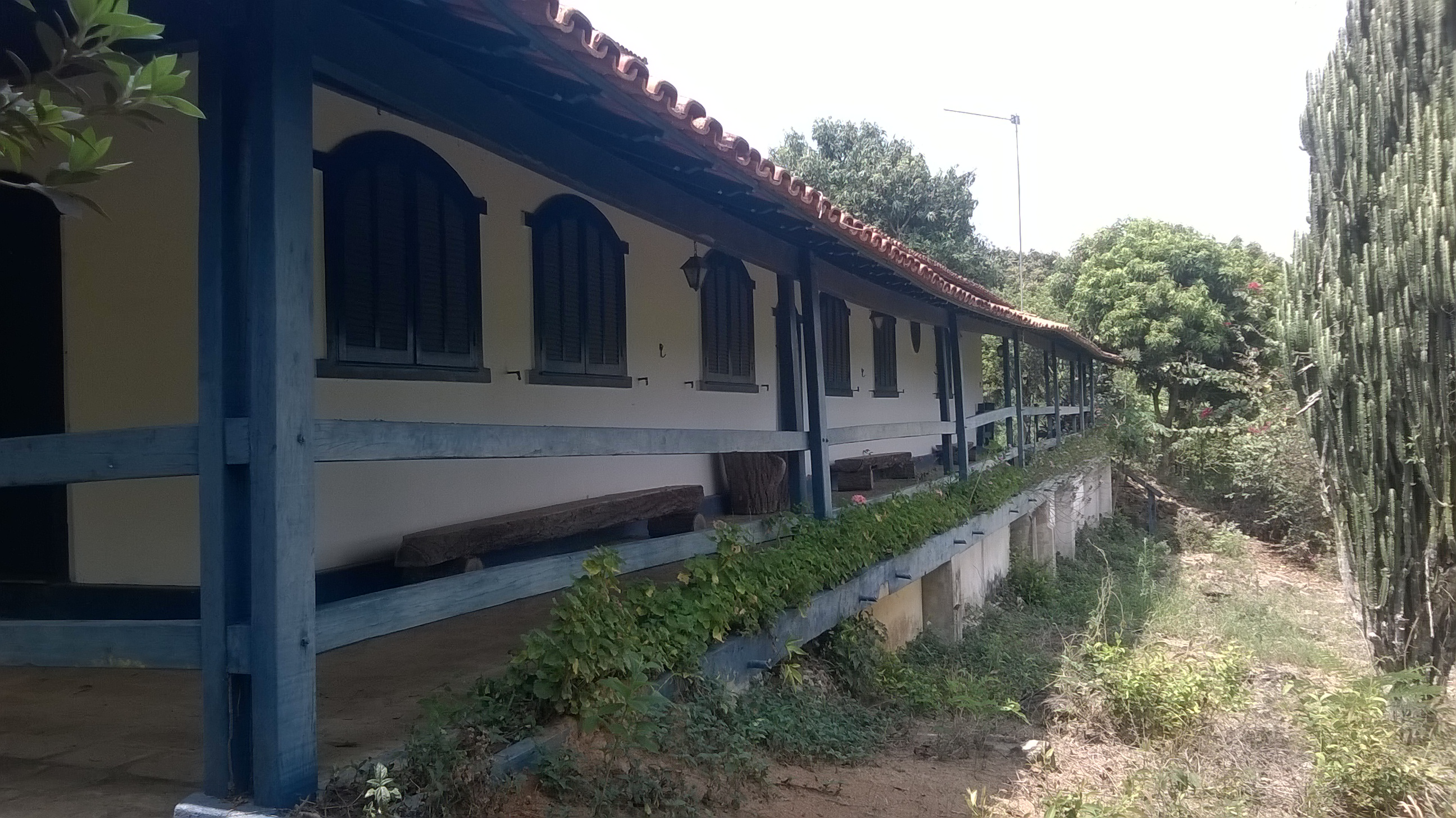 Fazenda Em Santo Antonio Do Monte Ofertas Pastar -> Planta De Sala De Ordenha