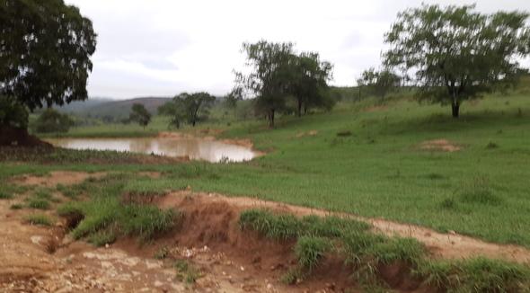 Propriedade Aluguel Fazenda Pecuária - Pastar Imagens