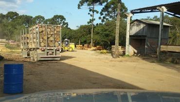 Propriedade Arrendamento Fazenda Pecuária - Pastar Imagens
