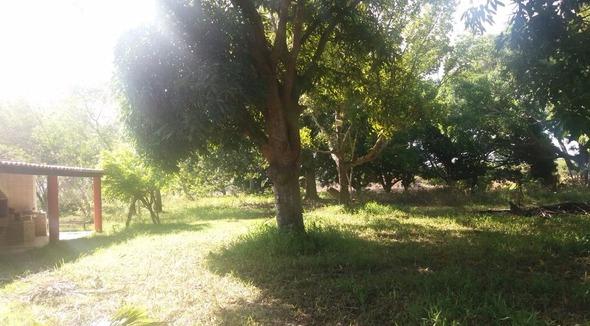 Propriedade Arrendamento Sítio - e-rural Imagens