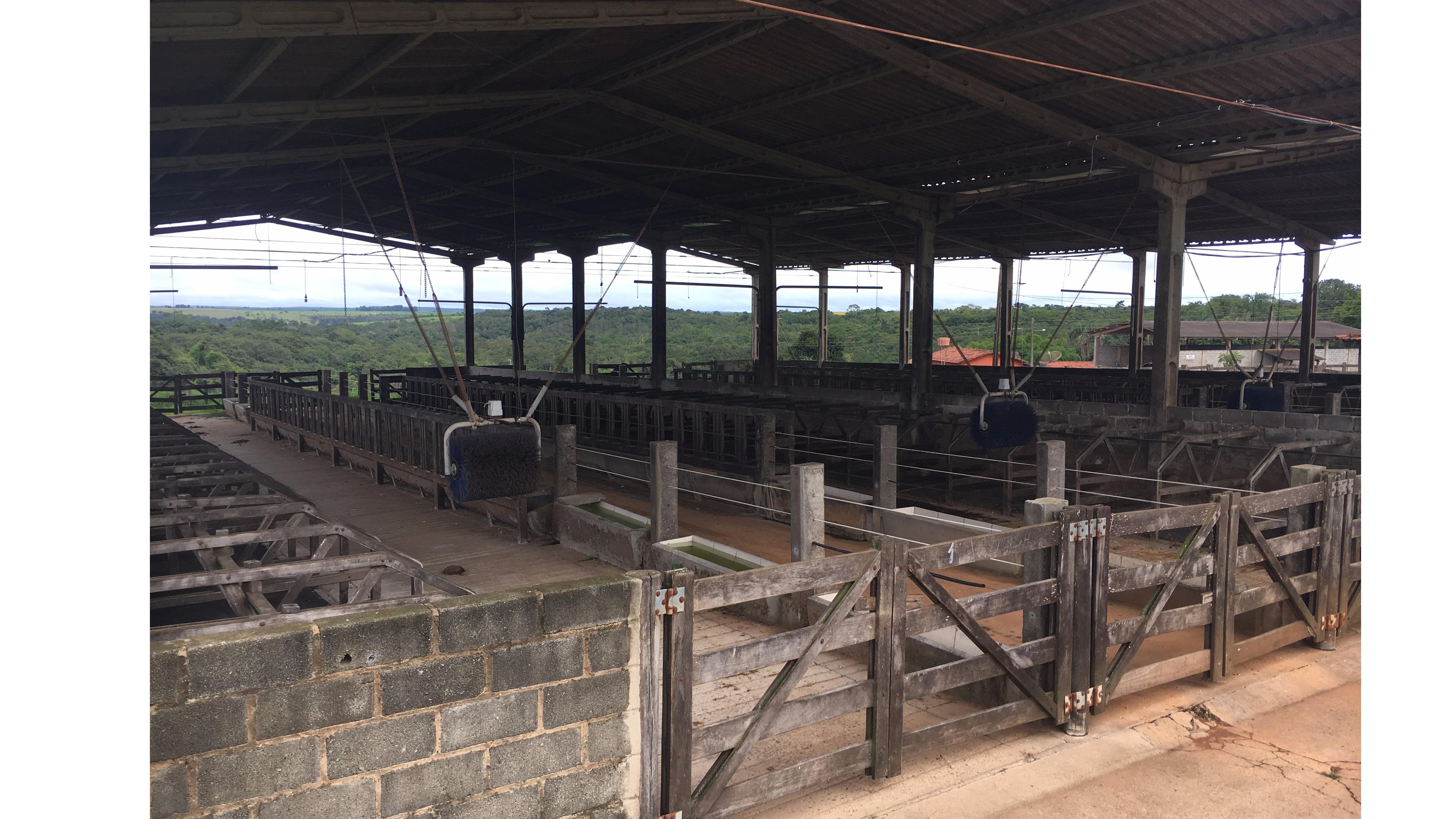 Fazenda 121ha Foi Referencia Nacional Em Leite Ofertas Pastar -> Planta De Sala De Ordenha