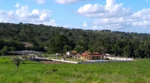 Fazenda De 140 Tarefas Em Alagoinhas Ba Escriturada 99a0fdd698a29