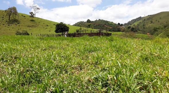 Propriedade Venda Fazenda - e-rural Imagens