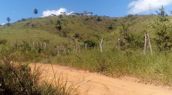 Propriedade Aluguel Fazenda Pecuária - e-rural Imagens