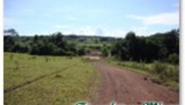 Propriedade Venda Fazenda Mista - Pastar Imagens