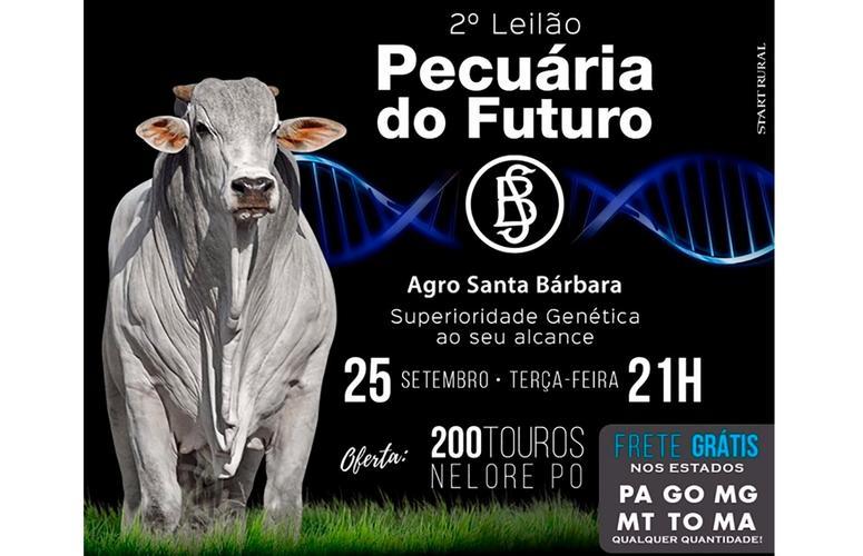 Superioridade genética marca o 2º Leilão Pecuária do Futuro