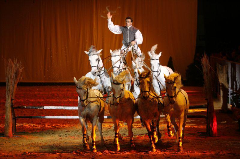 Equitana 2019: Lorenzo mais uma vez dá show com seus cavalos-1