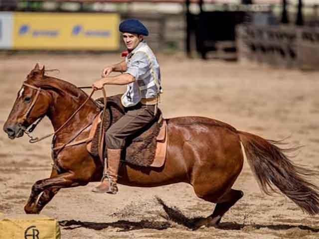 ABCCC projeta ano promissor para o Cavalo Crioulo-1