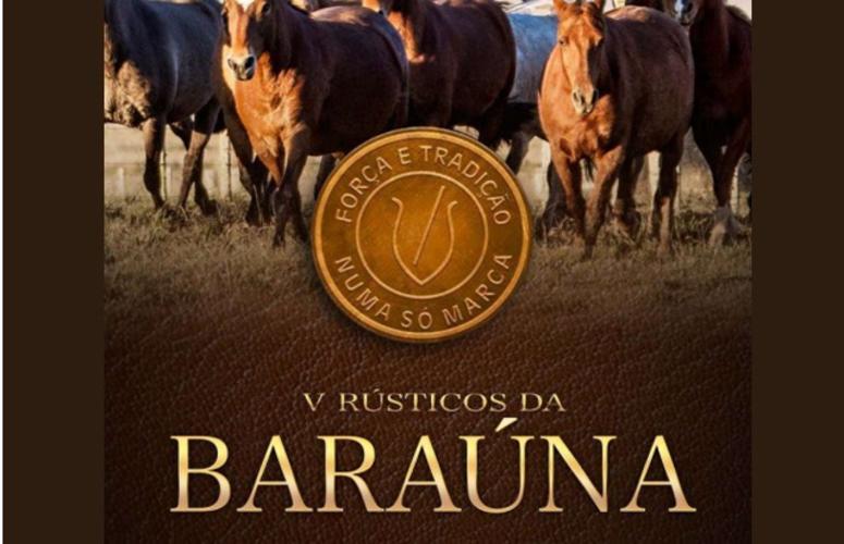 Cabanha Baraúna oferta Angus e Crioulos neste sábado