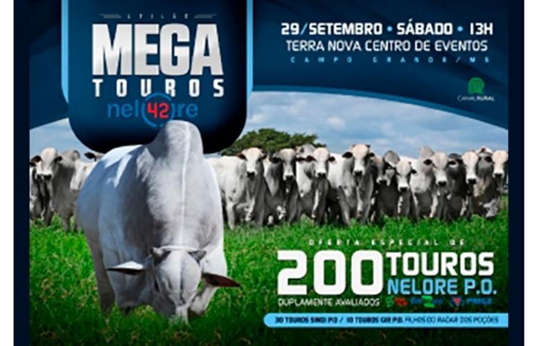 Leilão Mega Touros 42 oferta animais duplamente avaliados