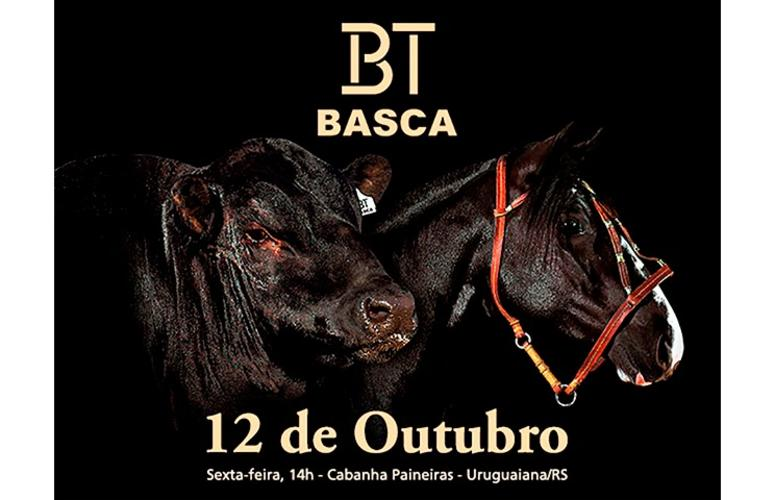 6º Leilão BT Basca oferta descendentes da elite Angus