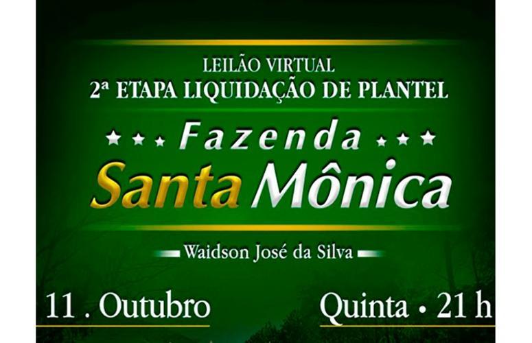 Santa Mônica promove liquidação de plantel