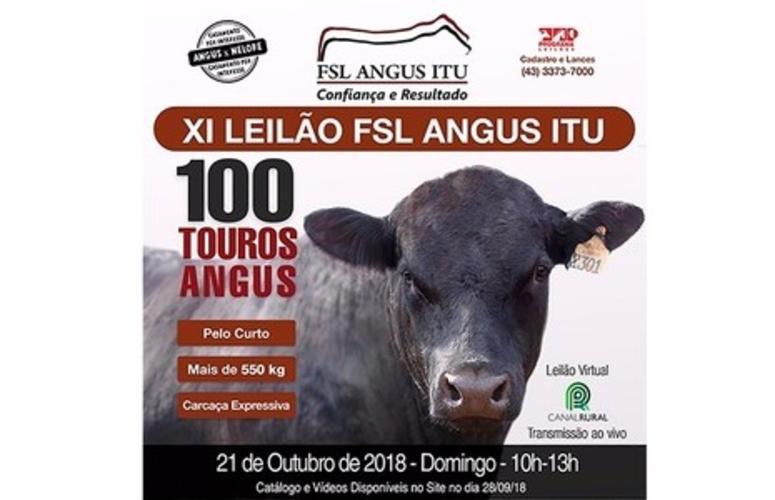 FSL Angus Itu oferta cruzamento entre as raças Angus e Nelore