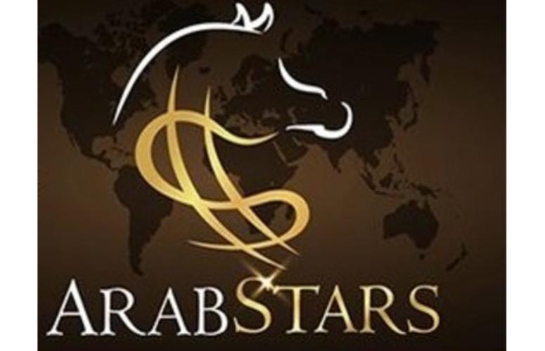 Leilão Virtual Arabstar oferta Cavalos Árabes no próximo dia 10