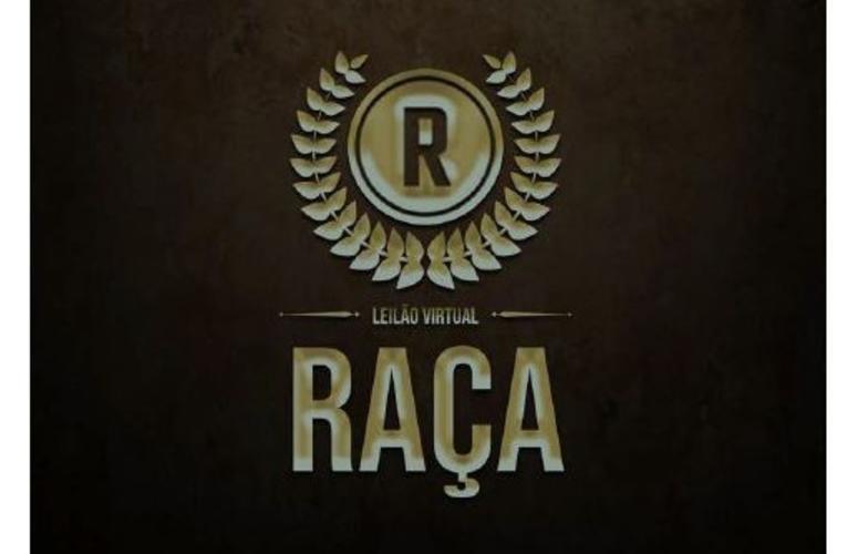 Remate oferta coberturas de campeões da raça Crioula