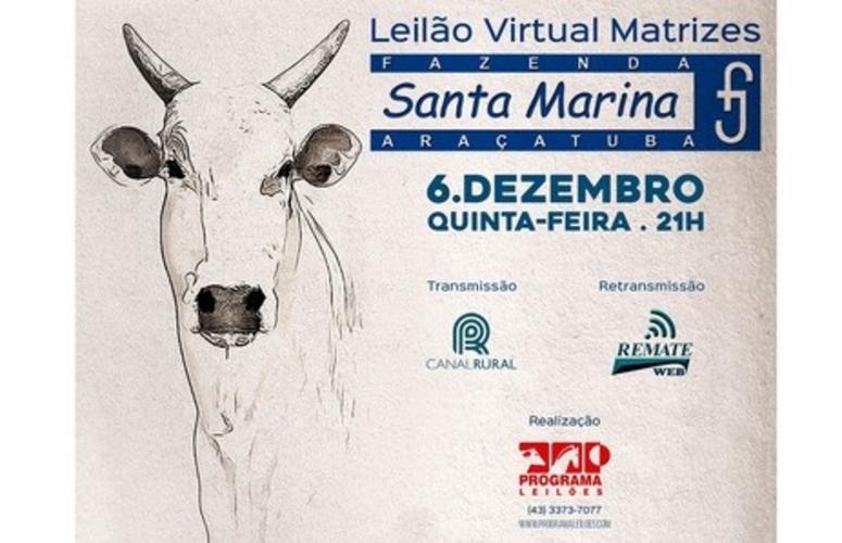 Fazenda Santa Marina coloca à venda matrizes avaliadas pelo Geneplus