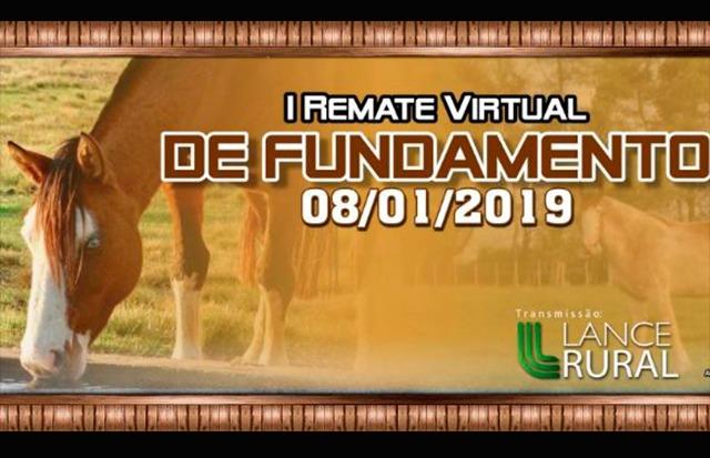 Remate Virtual de Fundamento coloca à venda cavalos Crioulos