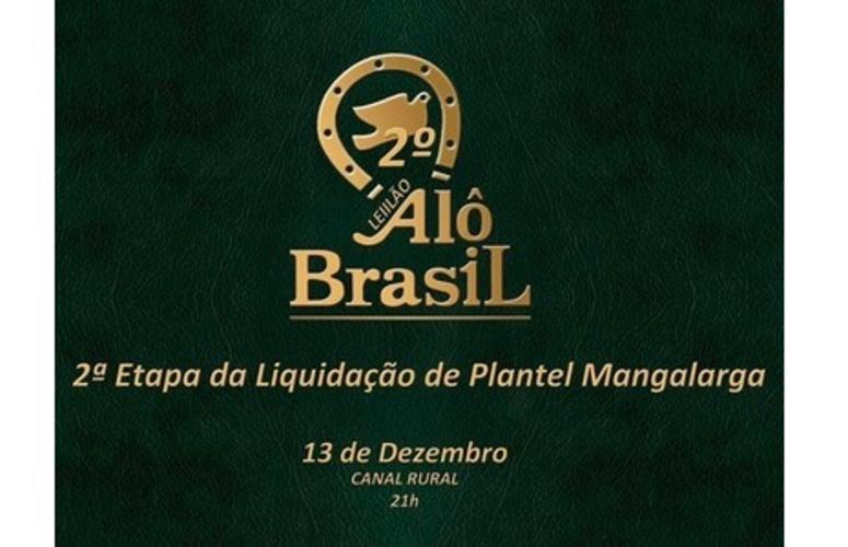 Haras Alô Brasil faz 2ª etapa de remate com liquidação total do Plantel