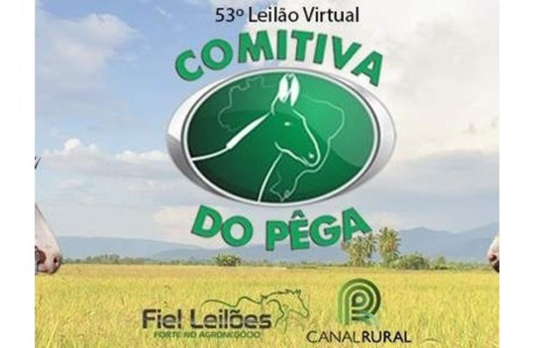 Comitiva do Pêga realiza seu 53º leilão virtual nesta sexta-feira