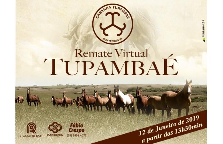 Cabanha Tupambaé abre agenda de leilões do Canal Rural em 2019