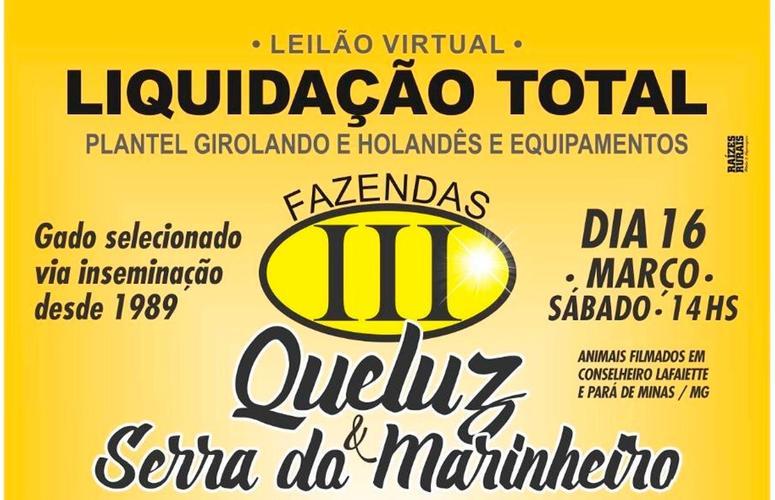 Fazendas Queluz e Serra do Marinheiro realizam liquidação de plantel