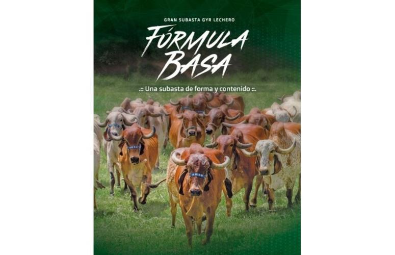 Fazendas do Basa ofertam animais Gir Leiteiro selecionados