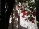 Tip Fin de semana en Colonia Uruguay Colonia del Sacramento
