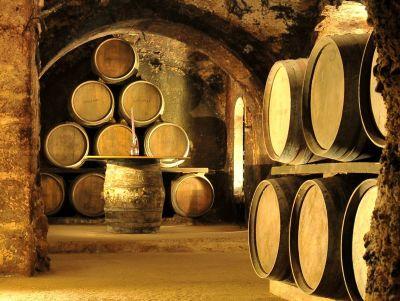 Bodegas en Carmelo: La ruta del vino