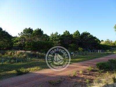 Terrenos Beyhaut - Viuda - Punta del Diablo