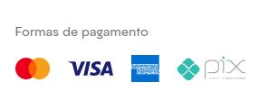 Ícones das formas de pagamento aceitas no e-commerce, representando as bandeiras de cartão e o Pix