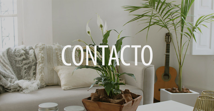 pineapple-contacto-banner1