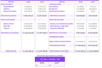 Planilla de Excel para Estado de Situación Patrimonial