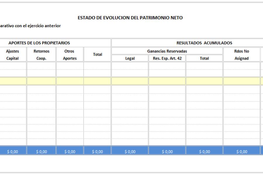 Planilla de Excel de Estado de Evolución Patrimonial