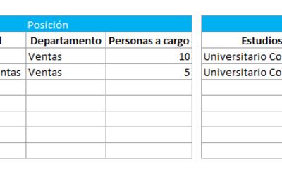 Perfil de empleado en Excel