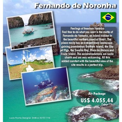Exemplo de Folheto ou Cartaz (sem dobra) do designer Luiza Rocha para Panfleto