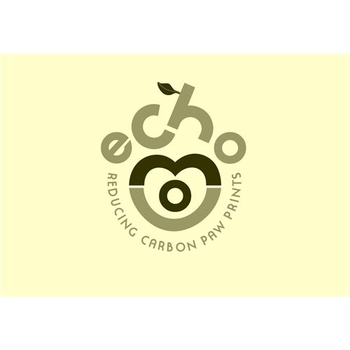 Exemplo de Logo do designer Tej para Echo
