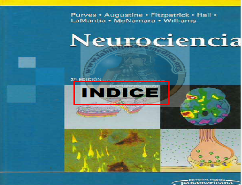 NEUROCIENCIAS PURVES OPTIMIZADO Cover