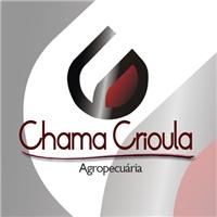 Logo Agropecuária Chama Crioula, Logo e Identidade, Comércio de produtos agropecuários