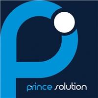 Prince Solution, Logo e Identidade, Consultoria de Negócios